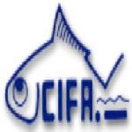 CIFA 2020 Job for Graduate