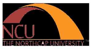 Northcap University Gurgaon Result 2021
